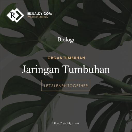 Organ Tumbuhan - Risnaldy